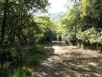 Rutas de senderismo (Valdorba-Navarra)